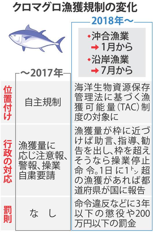 水産庁:太平洋クロマグロ漁に法...