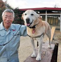 元々は保護された迷い犬ながら、訓練を受け災害救助犬に認定されたラッキーと、飼い主の岡村喜造さん=滋賀県湖南市の山本家庭犬・警察犬訓練所で、大原一城撮影