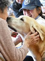 セラピー犬「えびす」と視線を交わすお年寄り(左)を見て、思わず笑みをこぼす飼い主の宮地ちえみさん=兵庫県稲美町の播磨サナトリウムで、浜本年弘撮影