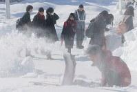 雪の影響で開始時間が1時間遅れた新潟大学のセンター試験会場に向かう受験生たち=新潟市西区で2018年1月13日午前10時17分、和田大典撮影