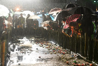 降りしきる雨の中、竹灯籠に火をともす人たち=神戸市中央区の東遊園地で2018年1月17日午前6時16分、大西岳彦撮影