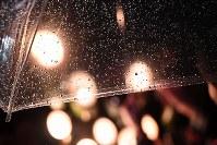 雨が降りしきる中、火がともされるろうそく=神戸市中央区の東遊園地で2018年1月17日午前5時25分、大西岳彦撮影
