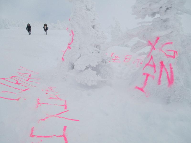 Happy Birthday Graffiti Sprayed Onto Snow Covered Trees In Aomori Pref National Park The Mainichi