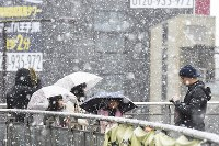 Snow begins falling in the suburban Tokyo city of Hachioji at around 10:40 a.m. on Jan. 22, 2018. (Mainichi)