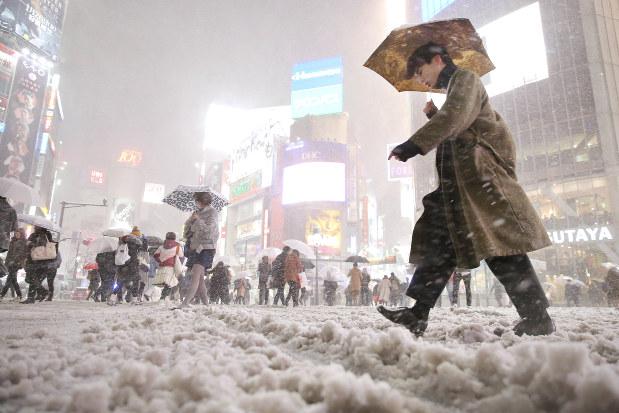 大雪:関東、平野部で積雪 4年ぶり、23区20センチ超 - 毎日新聞
