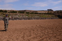 約10ヘクタールの農地でバレイショなどを栽培する門畑さん。「人手不足が深刻だ」と訴える