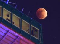 皆既月食となり赤銅色になった月。手前はさっぽろテレビ塔=札幌市中央区で2018年1月31日午後10時2分、竹内幹撮影