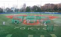 東大球場は1983年に全面人工芝化された=東京都文京区の東大球場で、岡本同世撮影