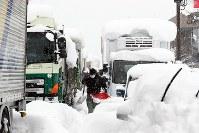 国道8号で立ち往生するトラックの列の前で除雪をする男性=福井県坂井市で2018年2月8日午前10時33分、幾島健太郎撮影