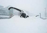 雪に埋まった福井駅前の恐竜モニュメント=2018年2月6日午後0時50分、佐々木雅彦撮影