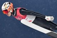 【平昌五輪】スキージャンプ男子ラージヒル予選の竹内択の飛躍=アルペンシア・ジャンプセンターで2018年2月16日、宮間俊樹撮影