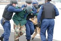 武装集団を取り押さえる警視庁の専門部隊と警備犬の訓練