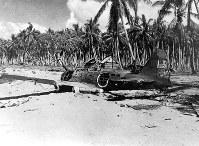 A fallen Japanese A6M