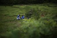 土壌学を専門にする寳示戸(ほうじと)雅之・北里大教授(63歳・中央手前)は、帰還困難区域内の水田で、定期的に同じ場所の土を採取して放射性セシウムを測定している。調査を始めた2013年以降、線量は毎年下がっているという=福島県浪江町で2017年6月3日、小出洋平撮影