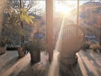 河瀬直美さんの自宅リビングに差し込む朝日=河瀬さん提供
