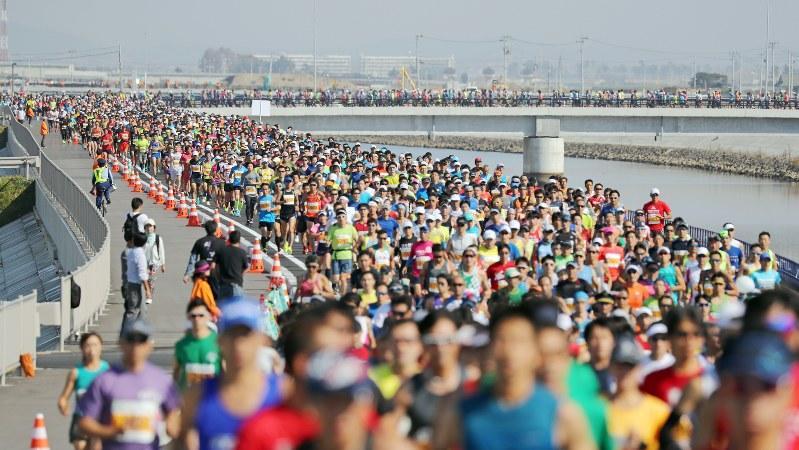 震災から6年半、東北・みやぎ復興マラソンで防波堤を兼ねた新しい道路を走るランナーたち=宮城県岩沼市で2017年10月1日