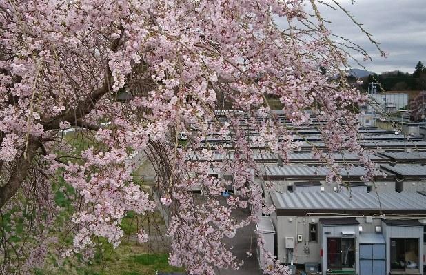 福島県葛尾村からの避難者が住む仮設住宅=福島県三春町で2017年4月18日、小林祥晃撮影