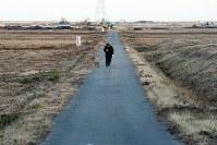 重機が動き回る浸水域で犬と散歩する男性=福島県南相馬市原町区で2016年2月17日、森田剛史撮影