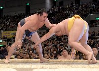 鶴竜(左)がはたき込みで遠藤を降す=エディオンアリーナ大阪で2018年3月12日、平川義之撮影