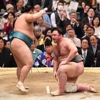 玉鷲(左)がはたき込みで栃ノ心を破る=エディオンアリーナ大阪で2018年3月12日、山崎一輝撮影