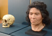 The woman's face is seen at the National Museum of Nature and Science in Ueno Park in Tokyo's Taito Ward on March 12, 2018. (Mainichi)