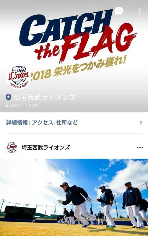 埼玉 西武 ライオンズ オンライン チケット ショップ