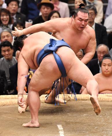 大相撲春場所:鶴竜と魁聖が9連...