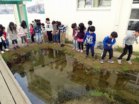 池のまわりを踏み固めました