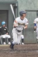 昨秋の公式戦でチームトップ打率を誇った田中大暉左翼手=横浜市のサーティーフォー保土ケ谷球場で