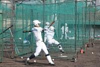 初戦に向け、打撃練習に励む選手ら=兵庫県西宮市の鳴尾浜臨海公園野球場で