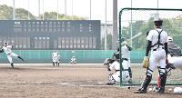 練習に汗を流すおかやま山陽の選手ら=大阪府豊中市の豊中ローズ球場で、益川量平撮影