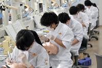 「狭き門」となった歯科医師を目指し、臨床基礎実習に取り組む学生=東京歯科大提供