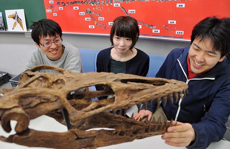 県立大大学院:恐竜の謎、解き明かす 古生物学コース、研究者育成にも ...