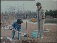 North Korean leader Kim Jong Un, left, as a little boy, and his mother Ko Yong Hui plant a tree in a garden. (Photo from the internal document