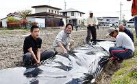 「自然栽培」をするサトイモの植え付け準備をする「おもや」の利用者ら。杉田健一さん(左から2人目)は「農業を障害者の自己実現の場に」と話す=滋賀県栗東市内で、土居和弘撮影