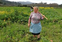 Dolores Leis stands in a field on her farm in Galicia, in northern Spain, on April 19, 2018. (Paula Vazquez via AP)