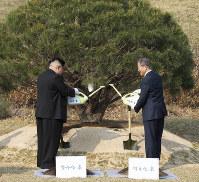 植樹する北朝鮮の金正恩朝鮮労働党委員長(左)と韓国の文在寅大統領=板門店で2018年4月27日、韓国共同写真記者団