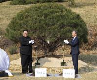 そろって植樹する北朝鮮の金正恩朝鮮労働党委員長(左)と韓国の文在寅大統領=板門店で2018年4月27日、韓国共同写真記者団