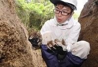 似島で被爆者の遺骨発掘調査を行う嘉陽礼文さん=広島市南区で、山崎一輝撮影