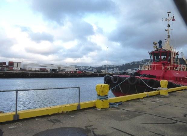 ウェリントン駅の正面は港。北島最南端の当地はクック海峡を渡って南島に向かう乗り換え口