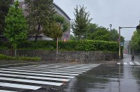 立て看板が撤去された京都大の吉田キャンパス本部敷地の南西側=京都市左京区で2018年5月13日午前10時33分、大東祐紀撮影