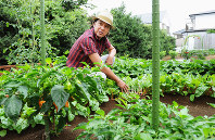 歌手の西城秀樹さん=東京都内で2010年8月9日、須賀川理撮影