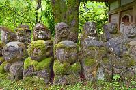 個性豊かな表情でたたずむ羅漢さん=京都市右京区で、川平愛撮影