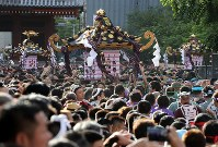 A portable shrine belonging to Asakusa Jinja shrine is carried by a large number of participants for one of Tokyo's three great festivals, the