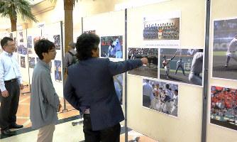 高校野球の県大会の各校別写真パネルは、どちらで …