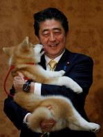 秋田犬を抱く安倍首相=2018年5月26日、ロイター