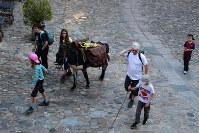 ロバに荷物を背負わせて巡礼を続ける家族