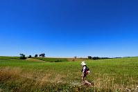 どこまでも続くかのような牧草地帯を歩いてゆく