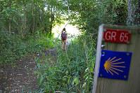 「GR65」というのはフランス国内に張り巡らされたトレッキングコースのひとつ。サンティアゴへの道と一部重複する