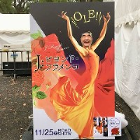 Yoyogi Park in central Tokyo hosted a flamenco related event in November 2017, which included this stick-your-face-here panel. (Photo courtesy of Hiromichi Shizume)